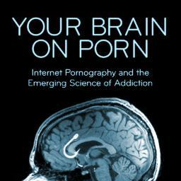 Studies of internet porn