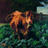 125OHD's avatar'