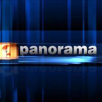 Panorama TVP2