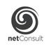 NetConsult Ltd Profile Image
