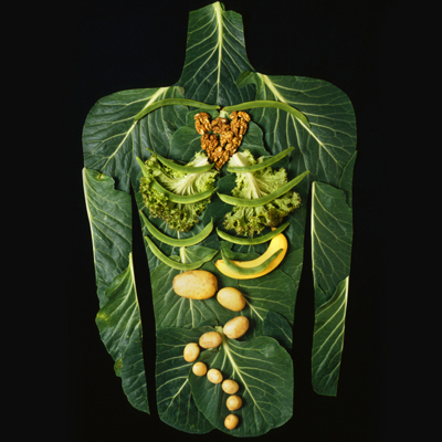 A picture of a torso and internal organs made entirely out of fruit and vegetables