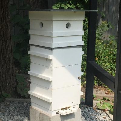 apiculteur urbain de hull