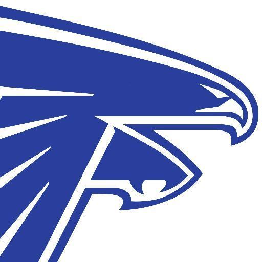 Danvers Falcons