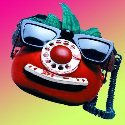 Resultado de imagen de tomatic