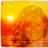 @NYer4Bernie Profile picture