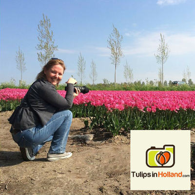 Tulip Festival (@Tulip_festival) Twitter profile photo