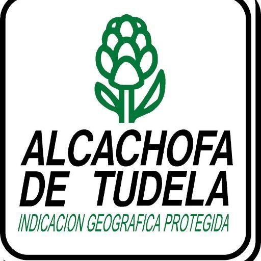 Alcachofa_Tudela