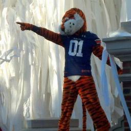The Auburn Fan