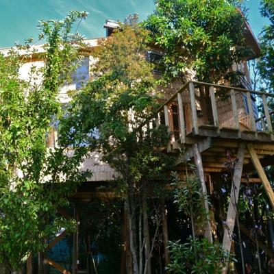 La Casa Del árbol De Chiloé On Twitter Video De Tonina