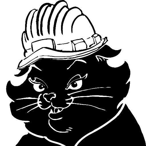 La gatta MiC