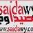 saidawy.com