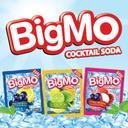Photo of bigmo_id's Twitter profile avatar