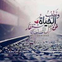 Ahmedramadan@yahoo.c