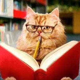 Teacher Cat (@realteachercat) | Twitter