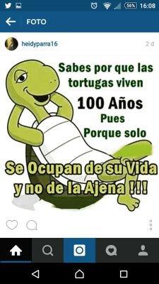 Odio Las Mentiras At Mnumerooooooo Twitter