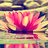 @whitelily22 Profile picture
