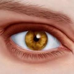 Wrinkles & Eye Bags