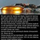 Ahmet Coskun (@02gulCos) Twitter