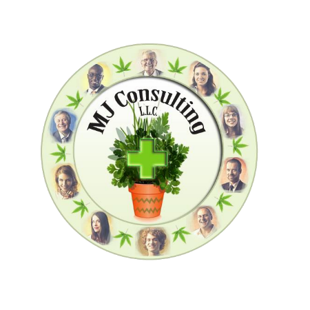 MJ Consulting, LLC
