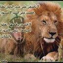 ابو العز (@1974197a) Twitter