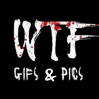WTF GIFs & Pics
