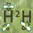 Honey Healing