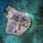 South China Sea 2015