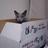 露青猫のアイコン