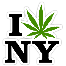 NYCtrees (@nycents) | Twitter