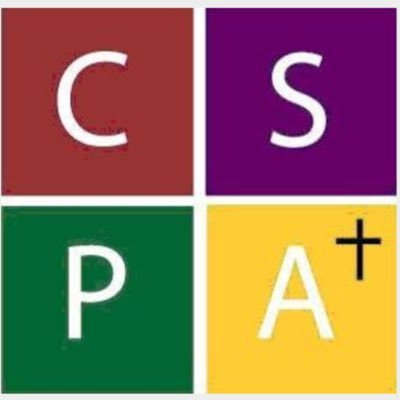 Image result for cspa