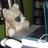 Photo de profile de MichRCWriters