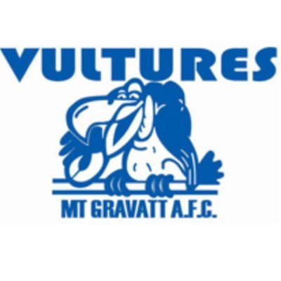Image result for mt gravatt vultures logo