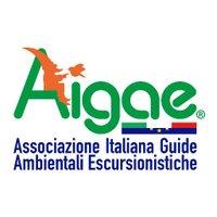 GAE_AIGAE
