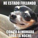 kevin alejandro (@alexp0075) Twitter