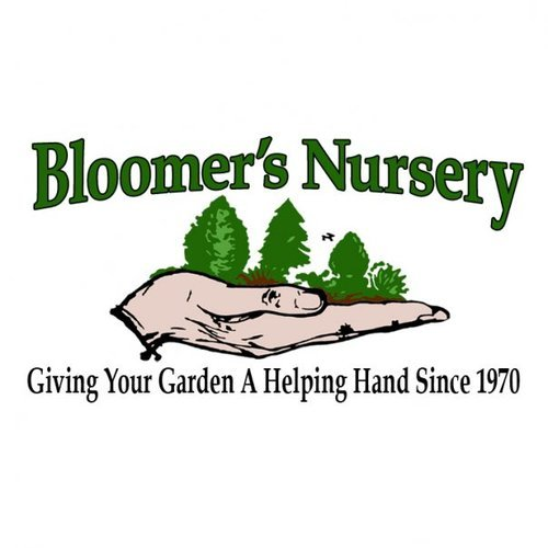 Bloomer S Nursery Bloomersnursery