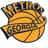 The Georgia Metros