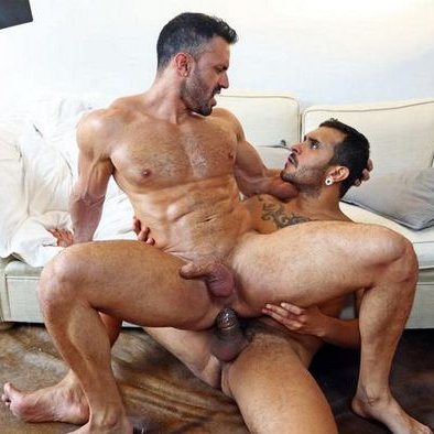 French gay fuck