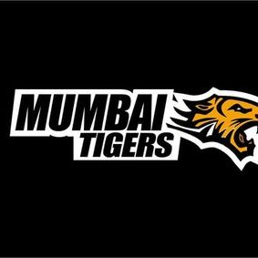 Mumbai Tigers Team - BCL season 2 , Box Cricket League 2016 Image-picture