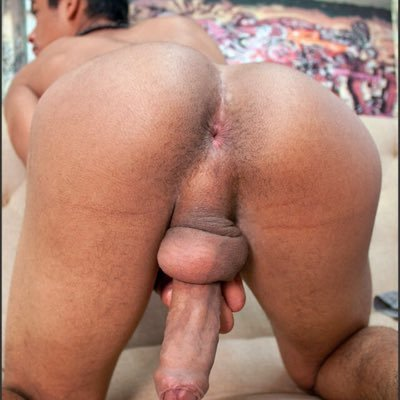 Gay gayxxximages twitter-4558