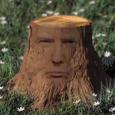 stump deutsch