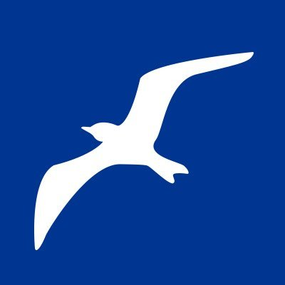 camp sea gull camp seagull twitter
