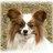 nancy5757's avatar'