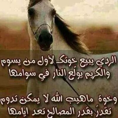 Mohammed Al Mansoori (@amzalmansoori) | Twitter