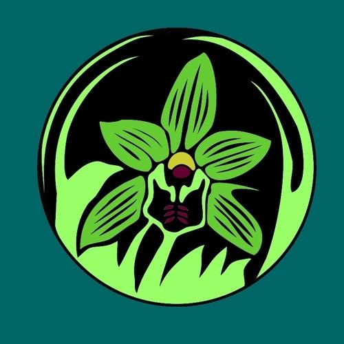 bella flora creative bellafloraatx twitter