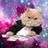 VWAP Cat