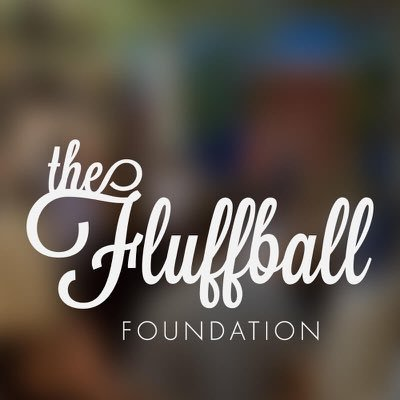 The Fluffball | Social Profile
