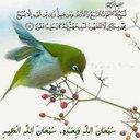 مرعي الصاوي (@195marei) Twitter