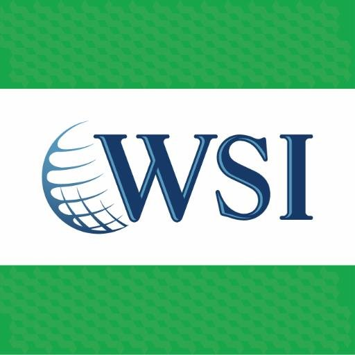 WSI-eMarketing