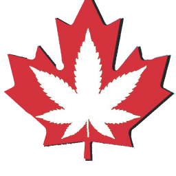 cannabis in canada the illustrated history pdf
