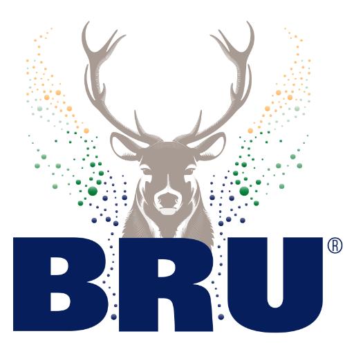 Image result for bru water logo